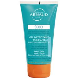 INSTITUT ARNAUD ARNAUD Очищающий гель для жирной кожи 150 мл гели arnaud гель очищающий для жирной кожи