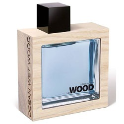 DSQUARED2 Ocean Wet Wood ��������� ����, ����� 100 ��